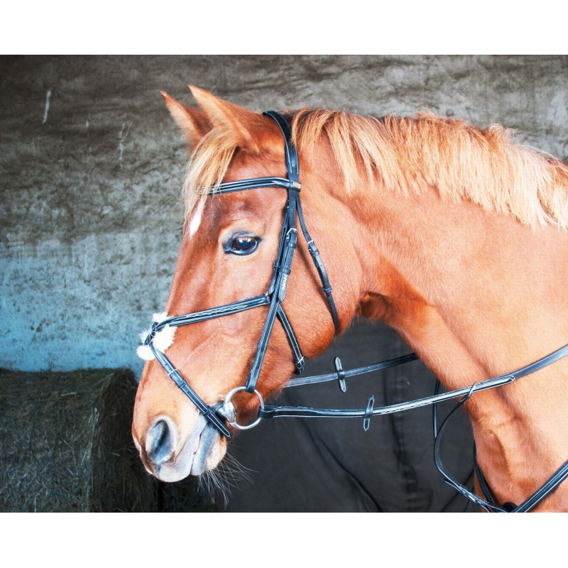 Bridon luxe michel robert tdet muserolle crois e - Only fools and horses bonnet de douche ...
