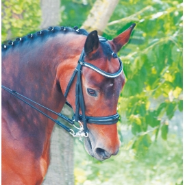 Cezanne Dressage Bridle