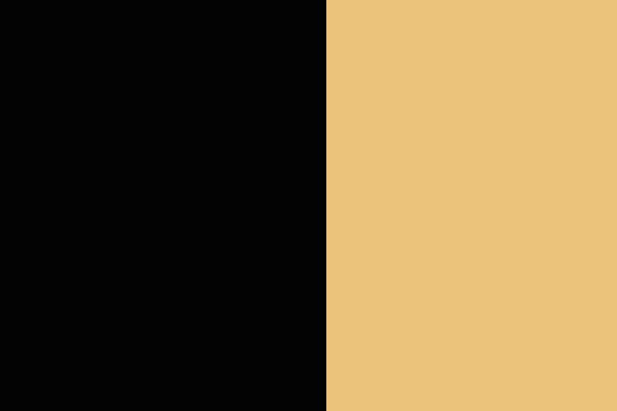 NOIR/BEIGE